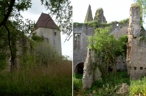 The castle and its vegetation in 2004