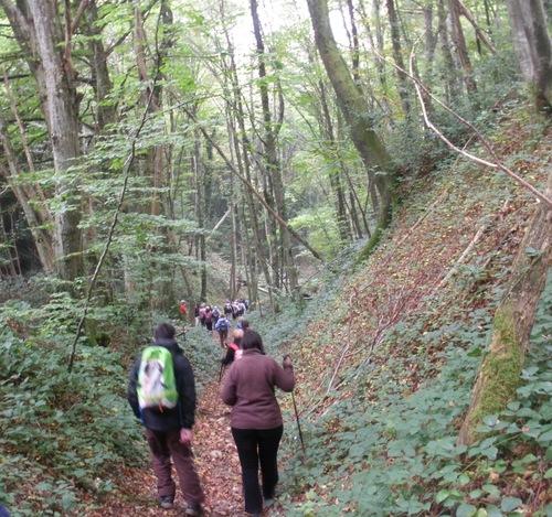 Nos randonnées entre nature et patrimoine bâti