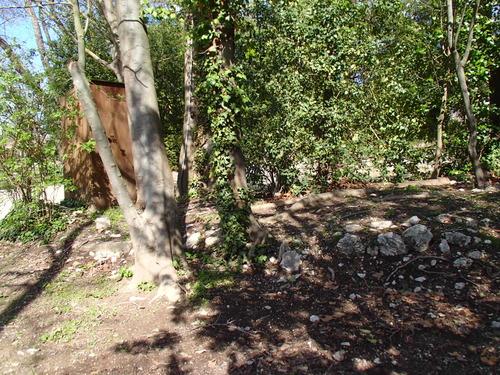 Murs de soutènement effondrés, envahis par la végétation