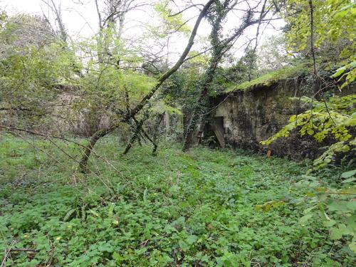 Ruines du Château Saint-Martin