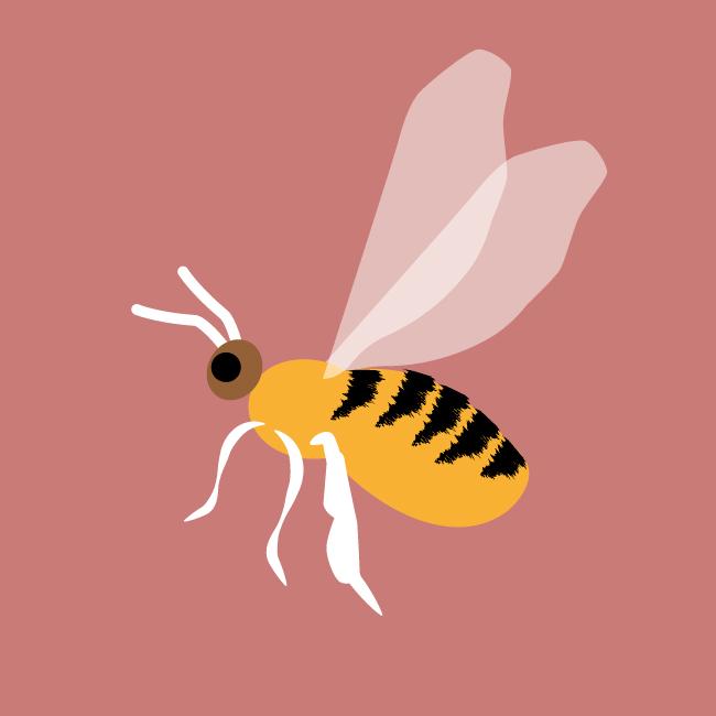 Picto le rucher du moussel mai2021